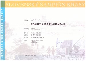 sampion-sk-comtesa.jpg